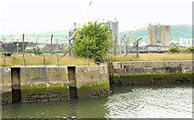 J3576 : Site for cruise ship terminal, Belfast (2013-2) by Albert Bridge