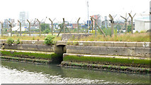 J3576 : Site for cruise ship terminal, Belfast (2013-4) by Albert Bridge