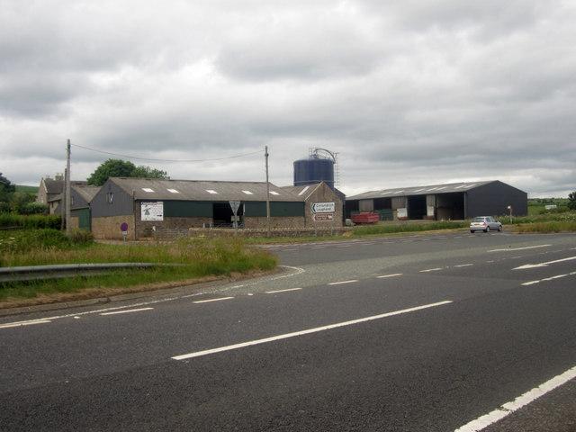Conundrum farm, Berwick-upon-Tweed