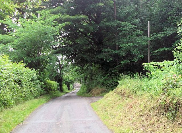 Entrance to Middle Forest from Wern y Wiel