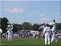 TQ7668 : High Kicking Taekondo display, Armed Forces Day by David Anstiss
