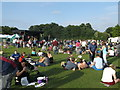 TQ7668 : Main Stage, close to the end of Armed Forces Day by David Anstiss