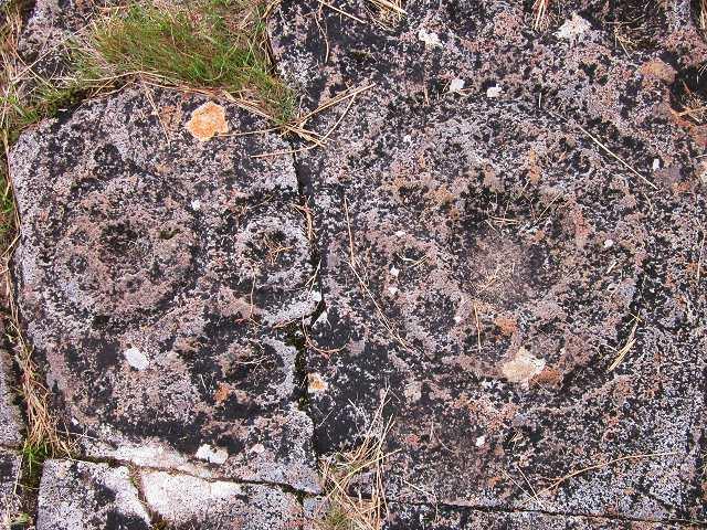 Rosettes at Ormaig rock art site