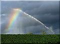 NO4103 : The rainbow maker by William Starkey