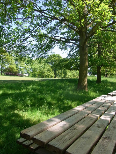 Charlecote Park entrance avenue