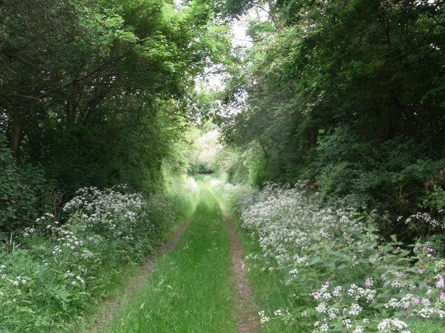 Permissive path, Little Alne