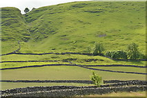 SK1482 : Dry stone walls,Long Cliff, Castleton by Peter Barr