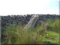 SE1342 : Bingley Moor:  High Two Stoops by Dr Neil Clifton