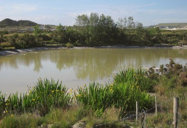 Pond on Smallhanger Waste