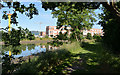 J3675 : The Connswater, Victoria Park, Belfast (2013-6) by Albert Bridge
