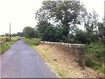 N2281 : Bridge-side, Soran, Longford by Darrin Antrobus