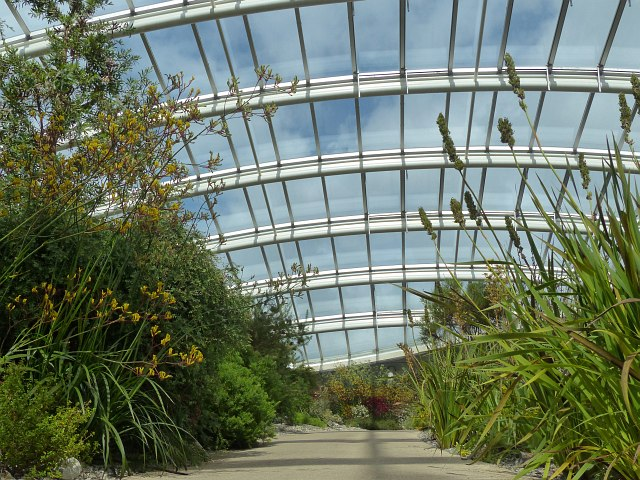 Inside the Great Glasshouse (3)