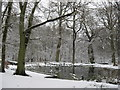 SP9713 : Snow surrounds Clickmere Pond, Ashridge (late February 2010) by Chris Reynolds