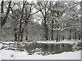 SP9713 : The Snow edge of Clickmere Pond, Ashridge (late February 2010) by Chris Reynolds