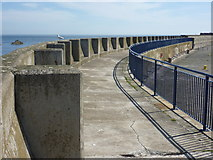 NT6779 : Coastal East Lothian : The Upper Promenade On The Outer Wall of Victoria Harbour, Dunbar by Richard West