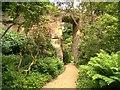 NZ0878 : Belsay Quarry Garden by David Dixon