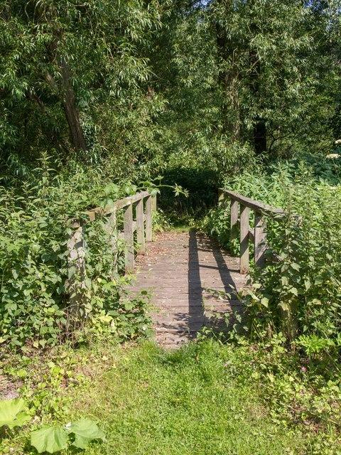 Wooden footbridge over Bourne Brook