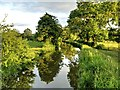 SP1764 : Stratford-Upon-Avon Canal, South of Preston Bagot by David Dixon