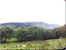 G8246 : Land off the R280, near Glenade Lough by Darrin Antrobus
