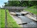 SJ9682 : Mill Race and Footbridge, Lyme Park by David Dixon