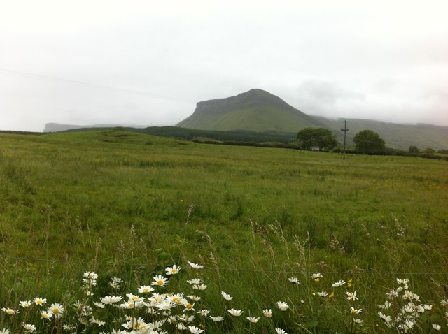 Field at Cashelgarran