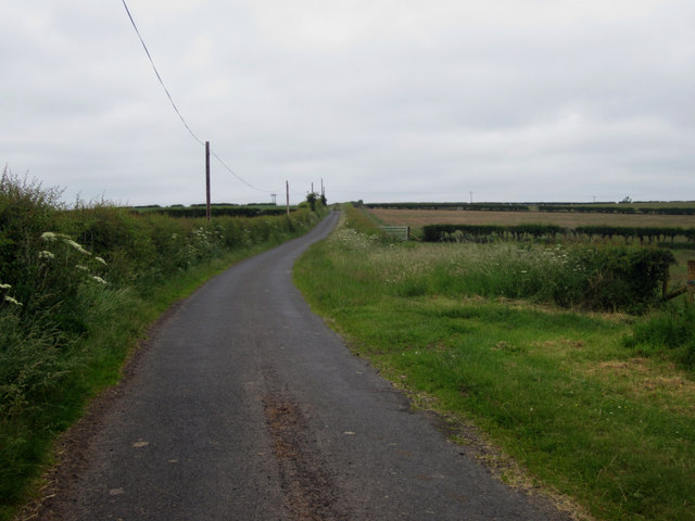 Country road west of White Damhead Farm