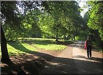 SX8963 : Path to Cockington Court by Derek Harper
