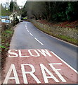 SO4815 : Slow at the northern approach to Rockfield by Jaggery