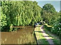 SJ8934 : Trent and Mersey Canal Near Stone by David Dixon