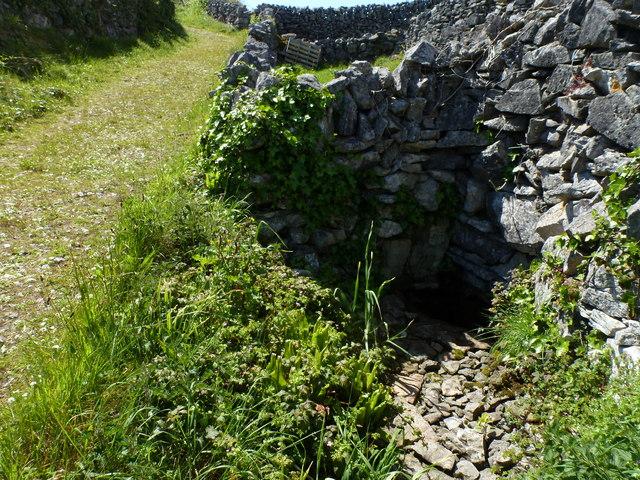 Spring well - Inis Oírr