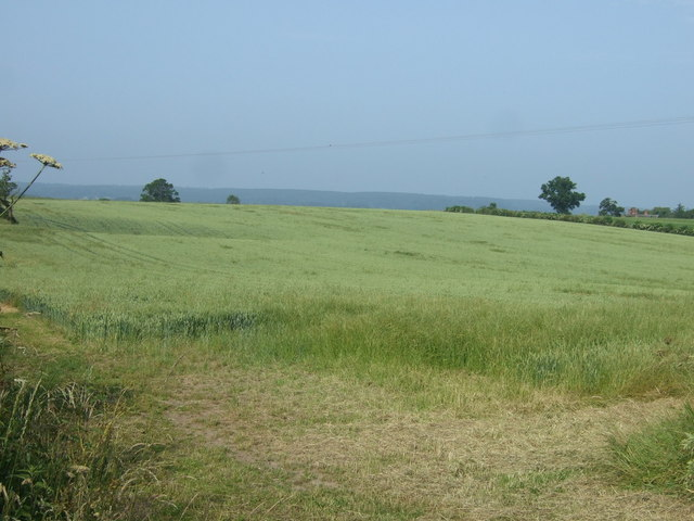 Farmland off Newlands Lane