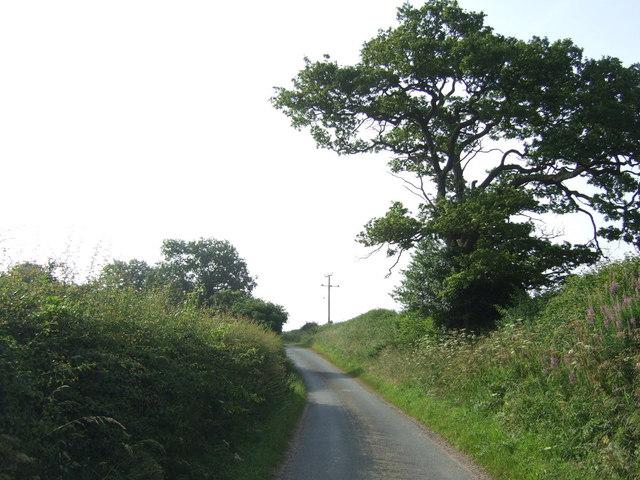 Newlands Lane