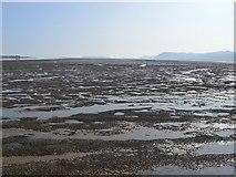 SH5873 : Mussel beds in Menai Strait by John M