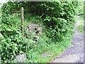 SX6493 : Hidden stile to Drybridge by Richard Dorrell