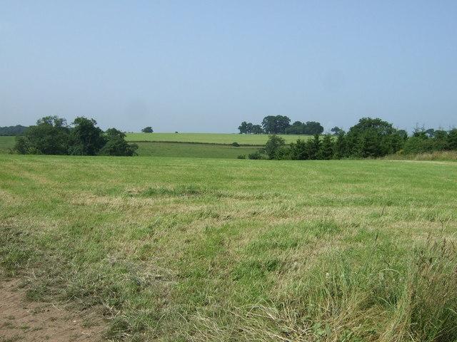 Farmland near Tatenhill