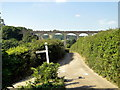 SY3192 : Cannington Viaduct, Axminster - Lyme Regis branch by Philip Pankhurst