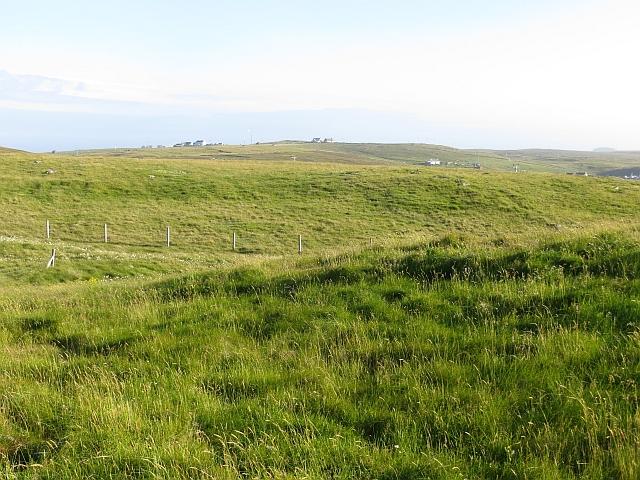 Grassland, Hamnavoe