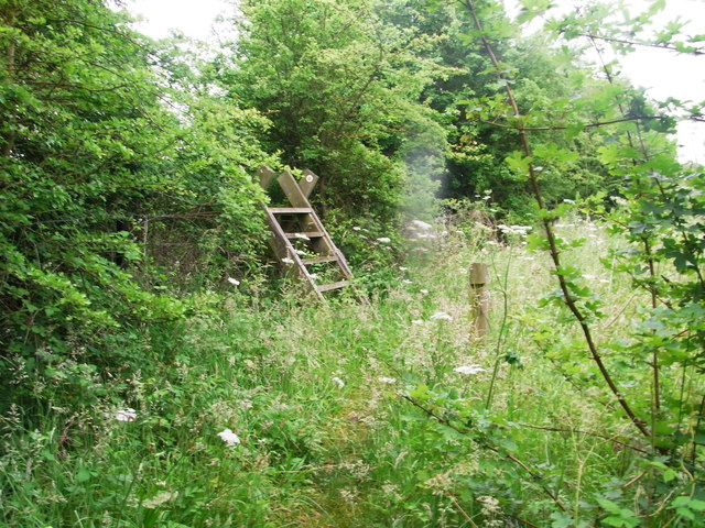 Ladder-stile, from enclosed footpath