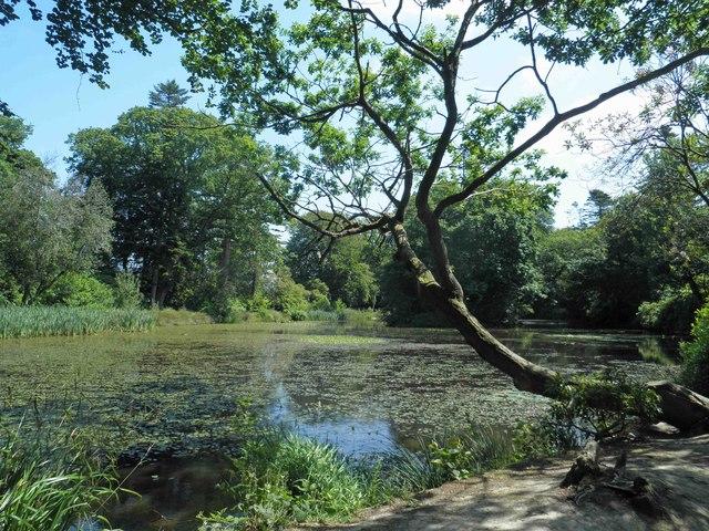 The lake at Llanerchaeron, National Trust