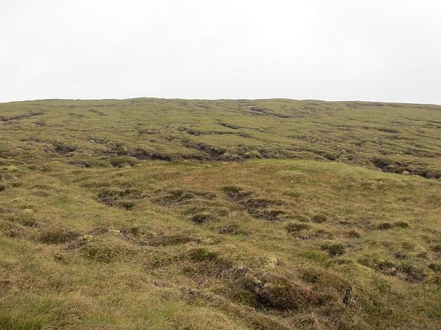 Bogs on White Grunafirth