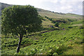 SD6579 : Leck Beck valley by Ian Taylor