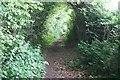 SU4356 : Bridleway to Sladen Green Farm by Sandy B