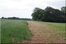 SU4356 : Farmland south of Crux Easton by Sandy B