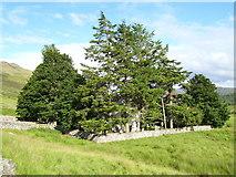 NH4591 : Croick Church by Craig Brown