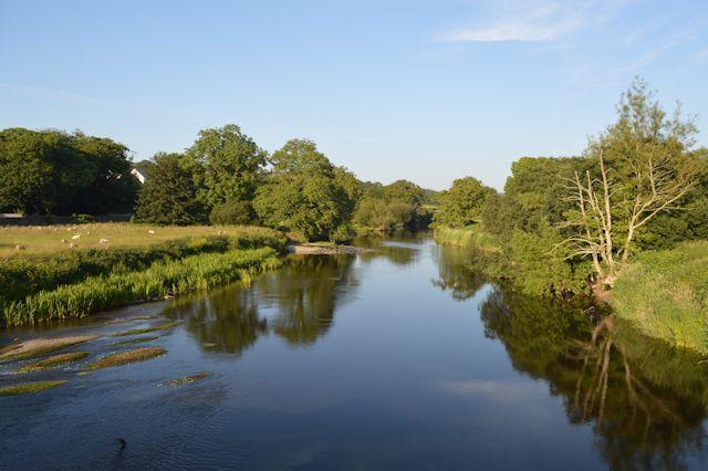 Reflections in the Afon Teifi