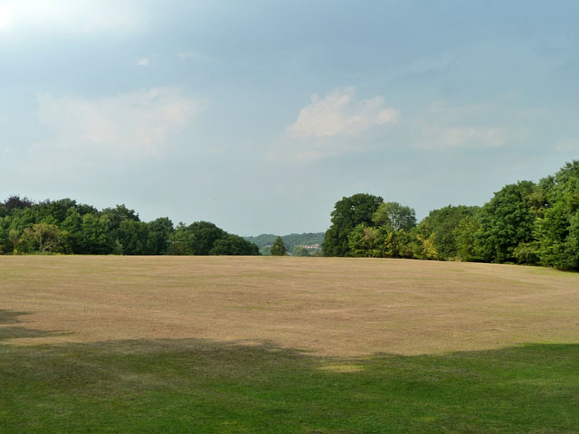 Closely mown field