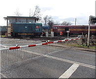 SO6302 : Charlie crosses Station Road, Lydney by Jaggery