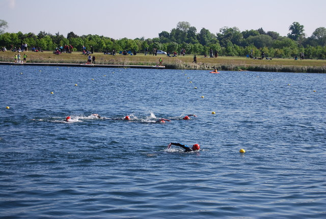 Image result for open water swim