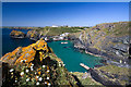 SW6617 : Mullion Cove and Harbour (2) by Mike Searle