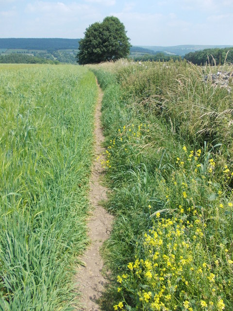 Footpath to the south of Haddon Fields